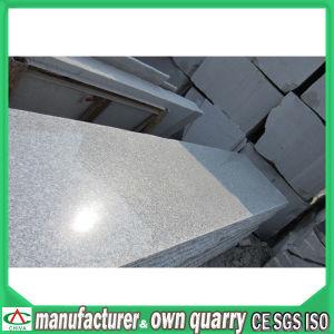 Matériau de construction en Pierre naturelle grise carreaux Grantie/brames ou revêtement mural/Comptoirs/vanité haut/Flooring/plinthes/pavés