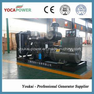 250kw Ricardo Motor-elektrische Dieselgeneratoren
