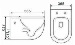 Современный дизайн ванной комнаты водяных знаков санитарных продовольственный раунда Wall-Hung туалет (6005)
