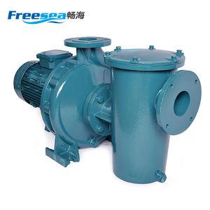 高圧の工場供給のプールの鋳鉄の水ポンプ