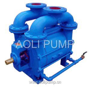 2be1 Single Stage Liquid Water Ring Vacuum Pump