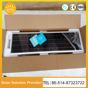 40W IP65は1台の統合された太陽街灯のすべてを防水する