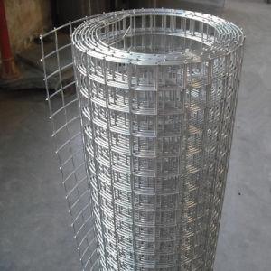 중국 건축과 담 (WWM)를 위한 우수한 직류 전기를 통한 용접된 철망사