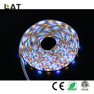 Bluetooth Smart SMD5050 3m LEDs RGBW 60/120TIRA DE LEDS flexible