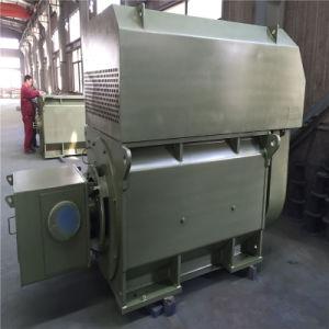 Motore asincrono a tre fasi di grande spinta verticale di formato medio