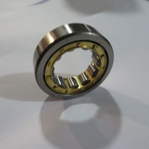 Rodamiento de rodillos cilíndricos de fila única fabricante