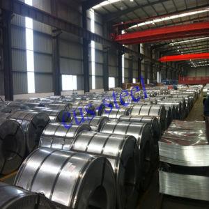 Bobina dei rilievi di freno del rivestimento del PE di controllo di qualità PPGI/strato d'acciaio preverniciato del ferro