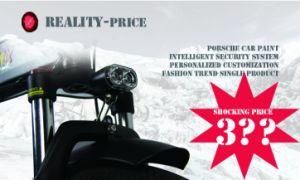 Fantas 36V250W fetter Reifen-Schnee-elektrisches Fahrrad mit Cer