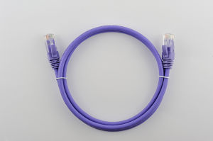 Cat5e PVC/LSZH RJ45 Connector Optical Fiber/Copper Patch Cord/Patch Lead