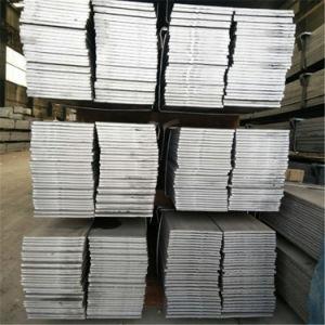 Staaf van de Vlakte van het Staal SUS304 van China de Beste Materiële