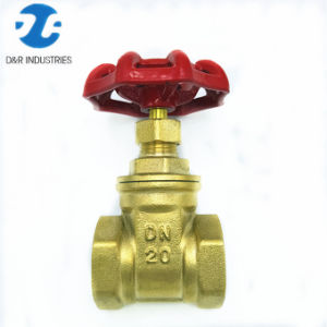 Valvola a saracinesca d'ottone della mini acqua Dn20 del filetto femminile (DR2003)