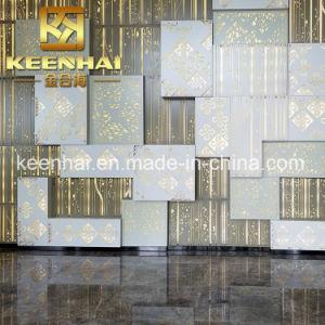 PVD personalizados decorativos recubiertos de Color 304 paneles de acero inoxidable 316