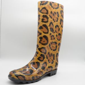 Новый стиль дамы моды ПВХ для загрузки дождя женщина
