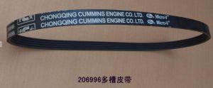 Cummins V courroie striée (206996) pour le CCEC Partie moteur