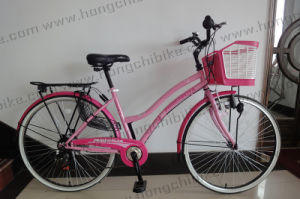 City Bicycle City Bike for Lady with Basket and Rear Carrier (HC-LB-41905)