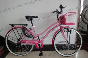 Basket와 Rear Carrier (HC-LB-41905)를 가진 Lady를 위한 도시 Bicycle 시 Bike