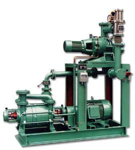 Wurzel-Pumpen-Vakuumsystem mit flüssigen Ring-Vakuumpumpen