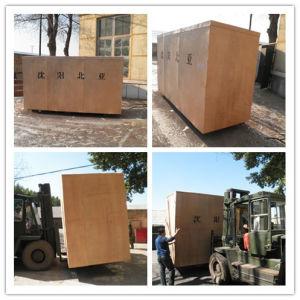 Uht totalmente automático e máquinas de embalagem de bebidas (BW-2500B)