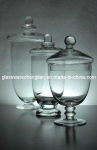 Un insieme di 3 Clear Glass Apothecary Jars (BI-GAJ09)