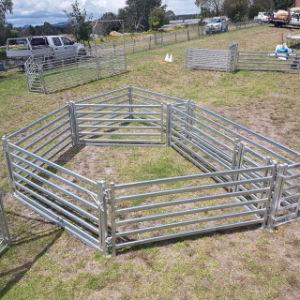 rete fissa d'acciaio Panels&Goat dell'iarda delle pecore del Bull della guida sicura e robusta di altezza di 1m che coltiva rete fissa