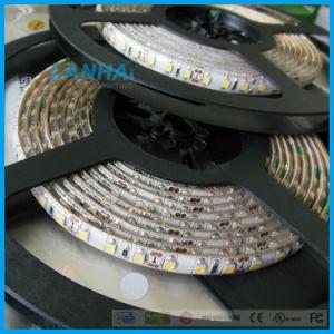 12V 3528 60LED SMD/M CW LED de luz da fita de tiras