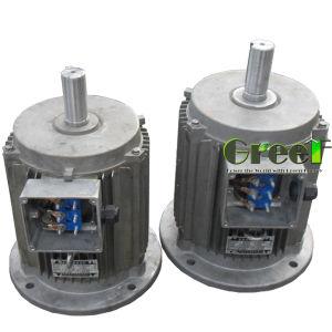 Alternatore sincrono a magnete permanente ad azionamento idraulico 12kw, 13kw, 15kw, 17kw, 20kw
