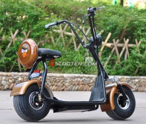 500Wか800Wブラシレス電気スクーターモーター、販売のための都市ココヤシの電気スクーター