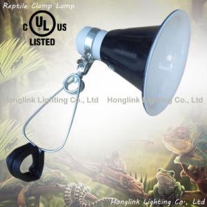 D'éclairage LED UL VDE E26/E27 Lampe chauffage Reptile Terrarium collier de serrage (CL-255D)