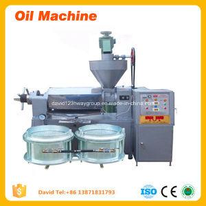 Les machines agricoles de la machine de traitement de l'huile de sésame Graines de presse de l'huile