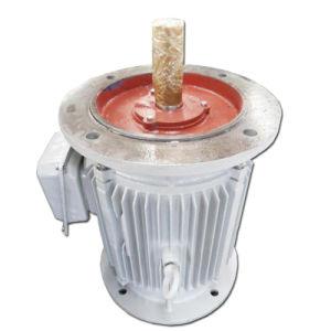 Generatore a magnete permanente a bassa velocità biassiale personalizzato 3kw 30kw 300kw 3MW