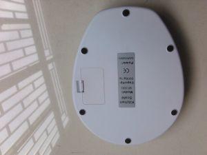 Précision numérique électronique de régime alimentaire des ménages de la nutrition de pesage Balance de cuisine