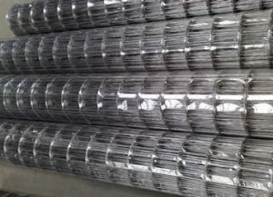 Высшее качество проволочной сетки из нержавеющей стали для пресса о нас машины