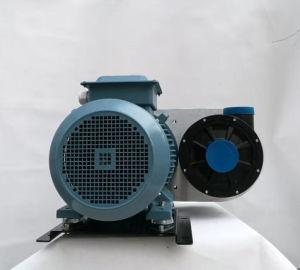 Zentrifugale Hochgeschwindigkeitsvakuumpumpe für Luft-trocknendes System