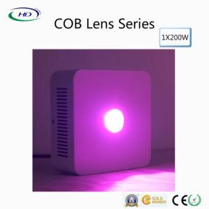 1*200W LED de lente de la Mazorca crece la luz para el cultivo comercial