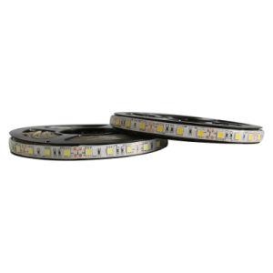Piscina única faixa de cores de luz com SMD5050 para House/Hotel Decoração/Mercado