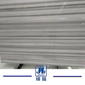 De Chinese Populaire Witte Marmeren Plak van Marmara voor Keuken/Badkamers/Muur/Vloer