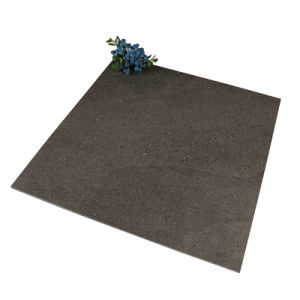 Het volledige Porselein van het Lichaam & Ceramische Verglaasde Rustieke Tegel voor Muur en Vloer