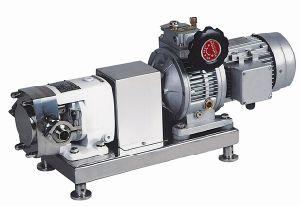 Variateur Step-Less pompe du rotor
