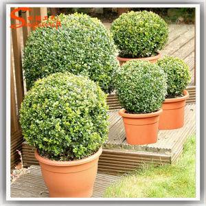 Aniti-UV planta falso de plástico Bonsai Topiary Artificial Bonsai Tree