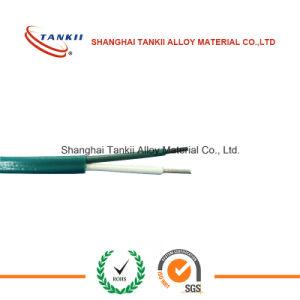 Superfine aangepast gepantserd thermokoppel 0.1mm ktype thermokoppel