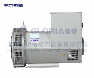 48kw/3 Brushless Alternator van de fase voor de Reeksen van de Generator, Chinese Alternator. /Gr22e