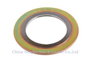 De flexibele Grafiet Spiraalvormige Pakking van de Wond