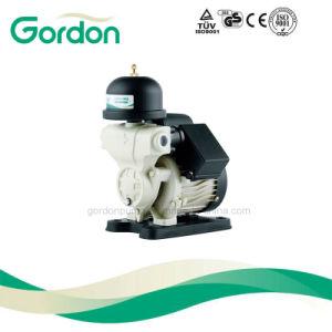 Selbstansaugende Wasser-Pumpe des kleinen Haushalts-Ga101 mit Messingantreiber