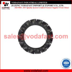 La norme DIN 6798 la rondelle de blocage dentelée en acier inoxydable, dents de scie de l'extérieur, de la forme d'un
