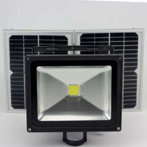 Controle remoto IP65 Lâmpada LED de energia solar jardim exterior Medianiz Segurança Holofote LED Spot