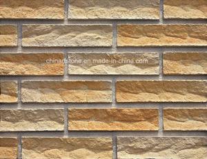 De kunstmatige Tegel van de Steen van de Cultuur van het Cement voor de Decoratie van het Huis van de Villa