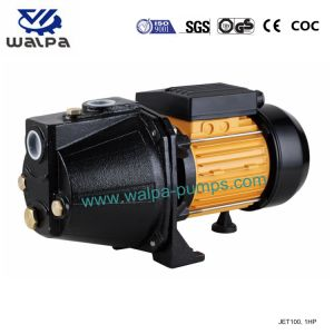 Enige Fase Van uitstekende kwaliteit van de StraalPomp 1HP 220V/50Hz van Mindong van Fujian Self-Priming