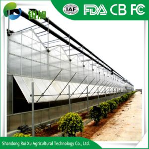 Multi-Span la placa de PC Láminas de policarbonato plástico invernadero solar en venta