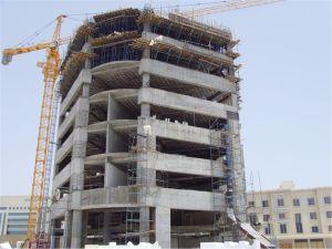 Ce nuevo 8t grúa torre 5613 para la construcción