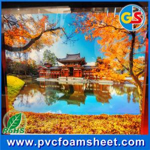 China productora de la fábrica de hojas de espuma de PVC (blanco y colorido)
